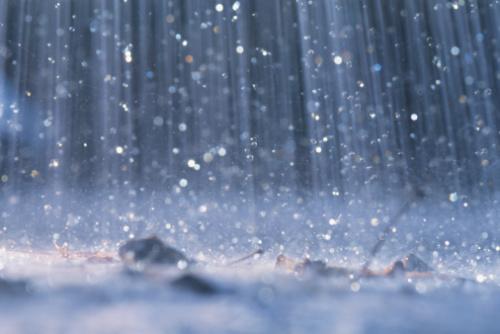 http://roparna.se/bilder/regn.jpg